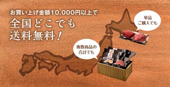 お買い上げ金額10,000円以上で全国どこでも送料無料!