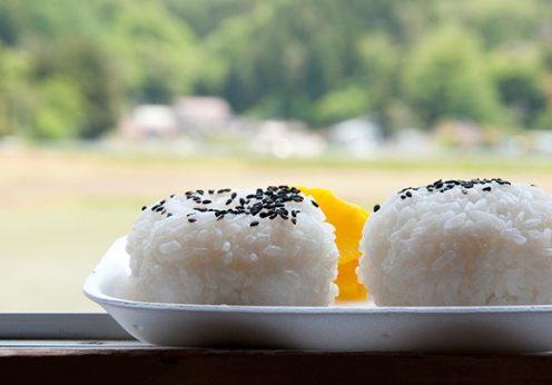 格之進のお米は岩手の農家の愛情が詰まっています