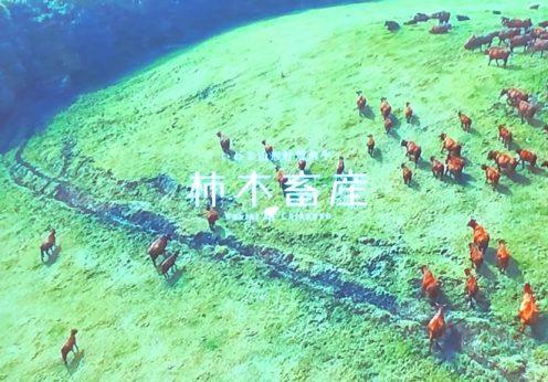 山形村短角牛を支える柿木畜産の志に学ぶ